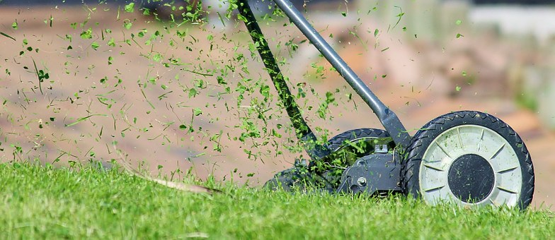 Spruce Up Your Business: Top Tips for Finding a Professional Landscaper